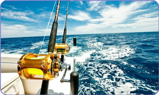 Charter Insurance from Marine Underwriters